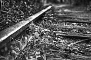 Black-and-white Metal Prints - The Train That Never Came 2 Metal Print by Scott Norris