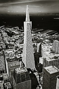 City Streets Photos - The Transamerica Pyramid by Erik Brede