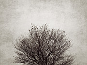 Textured Tree Prints - The tree Print by Diana Kraleva