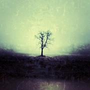 Tree Photography - The Tree by Jeff Klingler