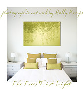 Wall Digital Art Prints - The Trees First Light Wall Art Print by Holly Kempe
