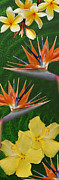 Bird Of Paradise Flower Digital Art - The Tropics by Ben and Raisa Gertsberg