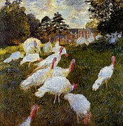 Flocks Painting Framed Prints - The Turkeys Framed Print by Claude Monet - L Brown