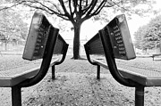 Park Benches Photos - The Twins by Ivey Gabriel
