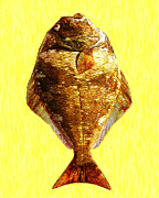 Schools Digital Art Metal Prints - The Ugly Fish 20130723mu Metal Print by Wingsdomain Art and Photography