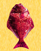Schools Digital Art Metal Prints - The Ugly Fish 20130723mum38 Metal Print by Wingsdomain Art and Photography