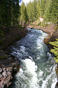 Umpqua River Prints - The Umpqua 1 Print by Todd L Thomas