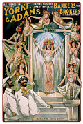 Harem Mixed Media Posters - The Vater Oomph Poster by Terry Reynoldson