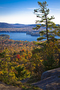 Fir Trees Photos - The View from Bald Mountain - Old Forge New York by David Patterson