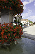 Red Geraniums Photo Prints - The Village Fountain Print by Sophie De Roumanie