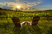 Blue Chairs Posters - The Vineyard   Poster by Debra and Dave Vanderlaan