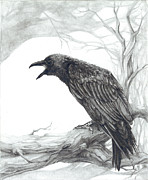 Raven Drawings Prints - The Visitor  Print by CarrieAnn Reda