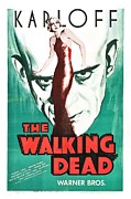 Movie Stars Framed Prints - The Walking Dead Poster Framed Print by Sanely Great