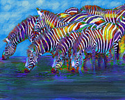 Zebra Digital Art - The Waterhole by Jane Schnetlage