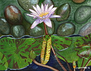 Laura Forde - The Waterlily