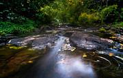 Jenny Rainbow - The Waters of the Eureka Waterfalls. Mauritius
