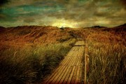 North Sea Digital Art - The Way by Hannes Cmarits