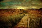 Hannes Cmarits - the way