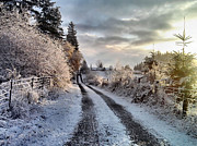 Winter Roads Photo Prints - The Way Home Print by Rory Sagner