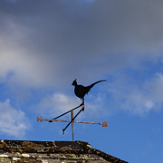 Weathervane Photos - The Way the Wind Blows by Diane Macdonald