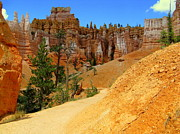 Bryce Canyon National Park Art - The Way to Queens Garden by J Allen