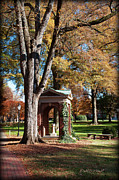 Nature Study Digital Art Posters - The Well - Davidson College Poster by Paulette Wright