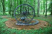 Joe Cashin - The wheel