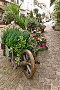 Old Store Photos - The Wheelbarrow at the Flower Shop by Olivier Le Queinec