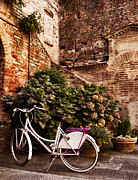 Bicycling Tuscany Framed Prints - The white bicycle and the old fashioned court in Buonconvento Framed Print by Roberto Pastrovicchio
