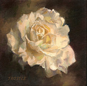Patti Trostle - The White Rose