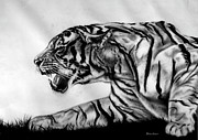 Live Art Drawings Framed Prints - The Wild Framed Print by Bhushan Nayak