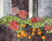 LeAnne Sowa - The Window Box