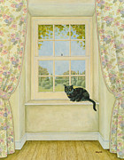Curtains Framed Prints - The Window Cat Framed Print by Ditz