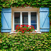 Old Wood Building Photos - The Window with the Geraniums and the Blue Shutters by Olivier Le Queinec