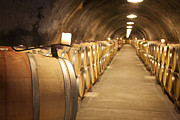 Wine Cellar Photos - The Wine Cave by Barry Benton