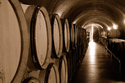 Wine Cellar Photos - The Wine Cellar by Tom Schwabel