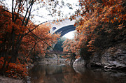 Wissahickon Posters - The Wissahickon Creek under the Henry Avenue Bridge Poster by Bill Cannon