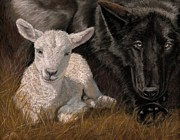 The Wolf And The Lamb Print by Sheri Gordon