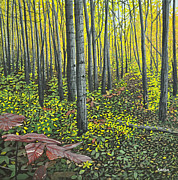 Woods Painting Originals - The Woods by Kenneth M  Kirsch