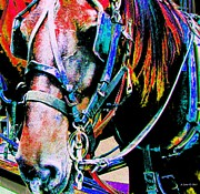 Quarter Horses Framed Prints - The Working Horse Framed Print by Annie Zeno