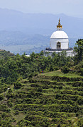 World Peace Art - The World Peace Pagoda Pokhara by Robert Preston