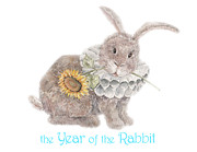 Nonna Mynatt - The Year of the Rabbit