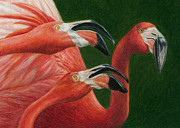 Flamingos Paintings - There are always Critics by Pat Erickson