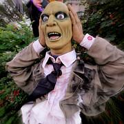 Dorothy Menera - There Goes My Head Again