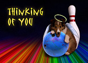 Jeanette K - Thinking of You Angel Sheltie Puppy