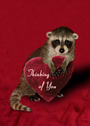 Jeanette K - Thinking of You Raccoon