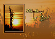 Jeanette K - Thinking of You Sunset