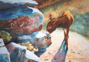 Burro Prints - Thirsty One Print by Marguerite Chadwick-Juner