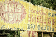 Shell Sign Art - This Is IT by Joan Carroll