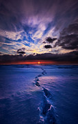 Phil Koch - This Is The Way